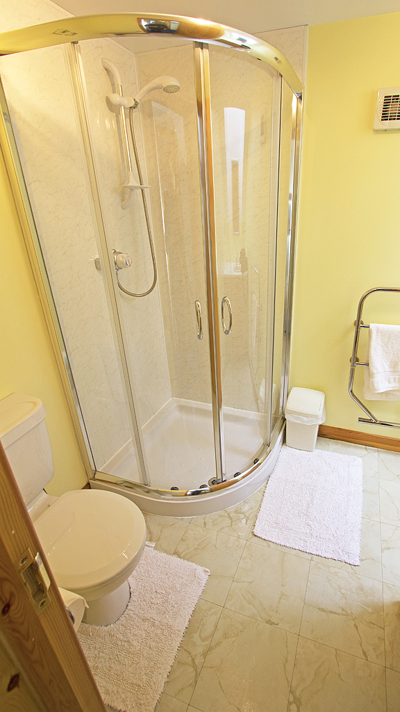 Bathroom with large shower, sink, and toilet